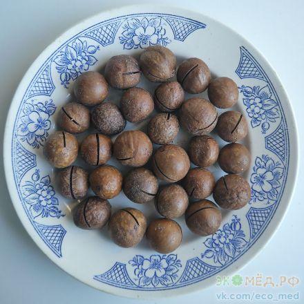 купить орехи макадамия спб